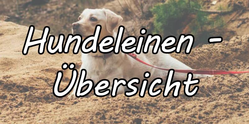 Hundeleinen - Verschiedene Leinenarten