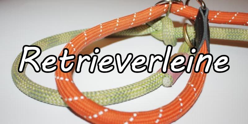 Retrieverleine - Leine und Halsband in einem