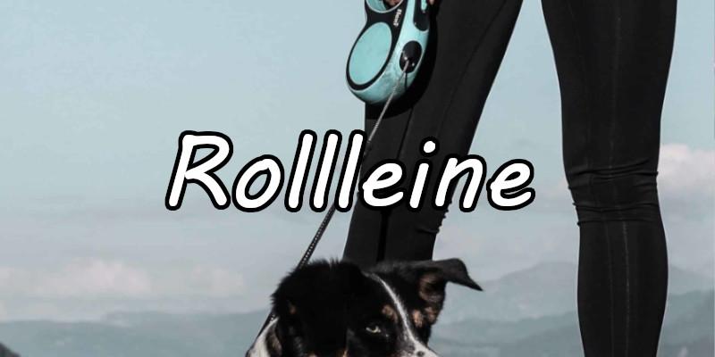 Rollleine - Flexi Leine